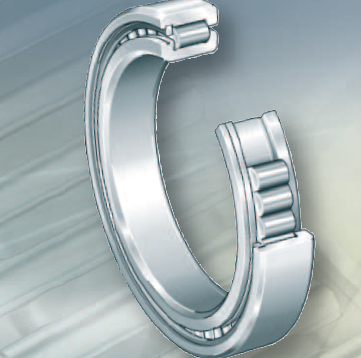 INA ull complement cylindrical roller bearings